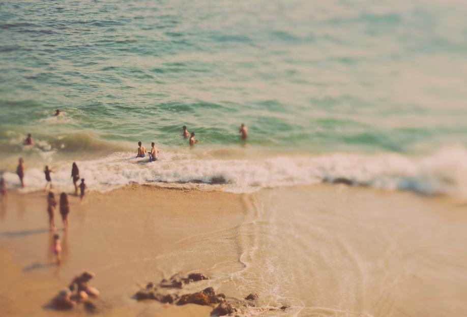California Summer No.1 alu dibond