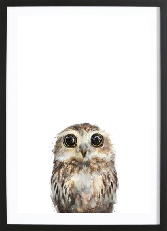 Little Owl -Bild mit Holzrahmen