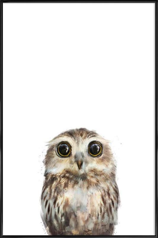 Little Owl -Bild mit Kunststoffrahmen