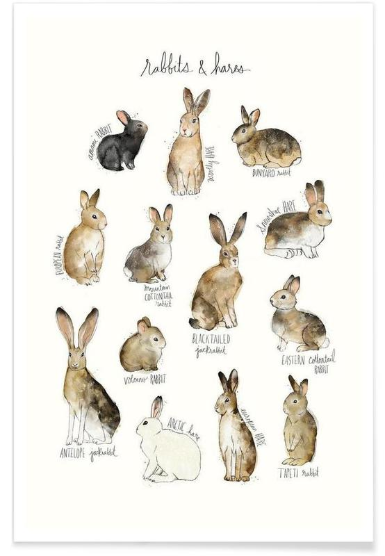 Rabbits and Hares Illustration Poster