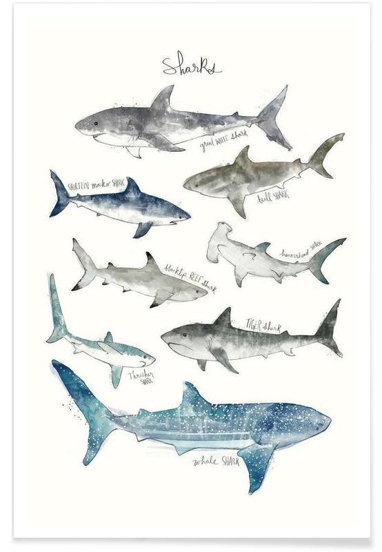 Haaien illustratie poster