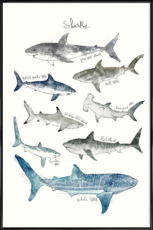 Sharks -Bild mit Kunststoffrahmen