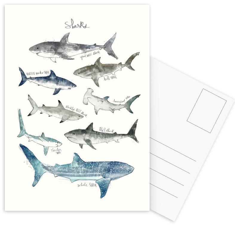 Sharks Postcard Set