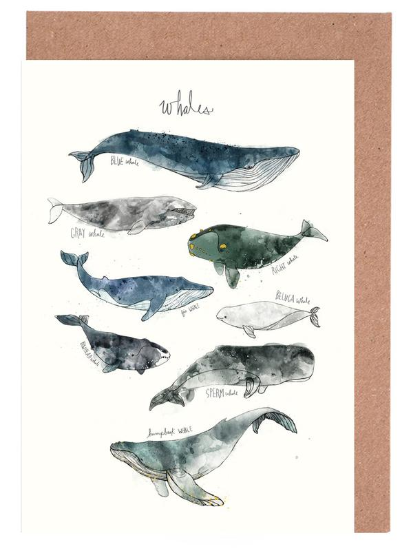 Whales Greeting Card Set