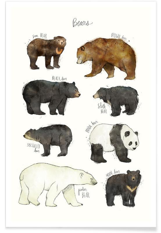 Bären-Illustration -Poster