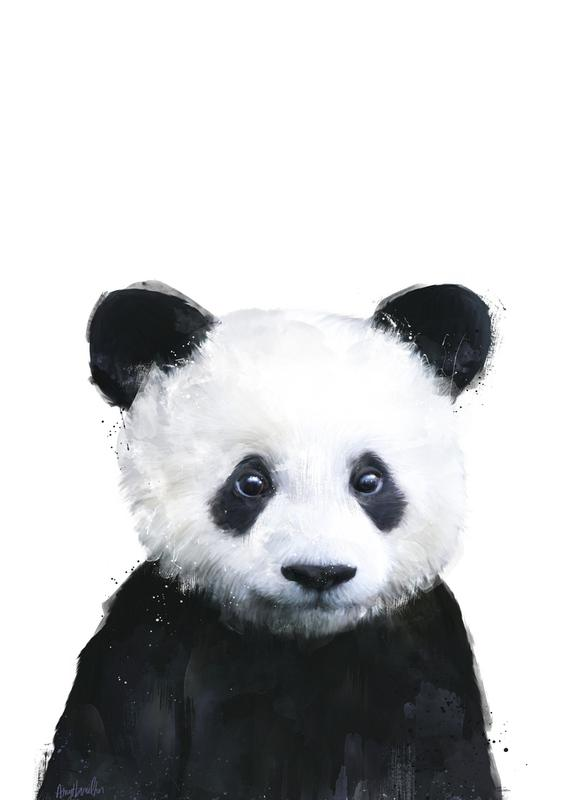 Little Panda -Leinwandbild