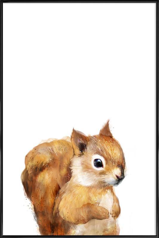 Little Squirrel Framed Poster