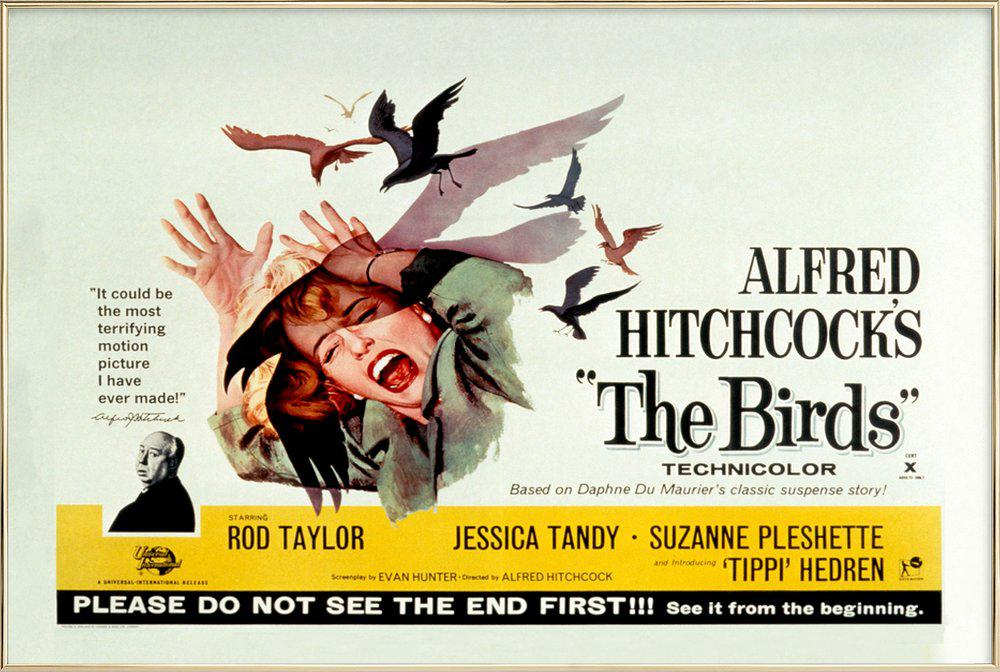 Alfred Hitchcock 'The Birds' Retro Movie Poster Poster in Aluminium Frame