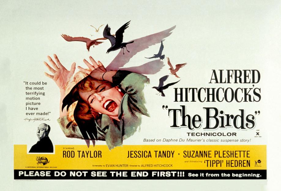 Alfred Hitchcock 'The Birds' Retro Movie Poster Acrylic Print