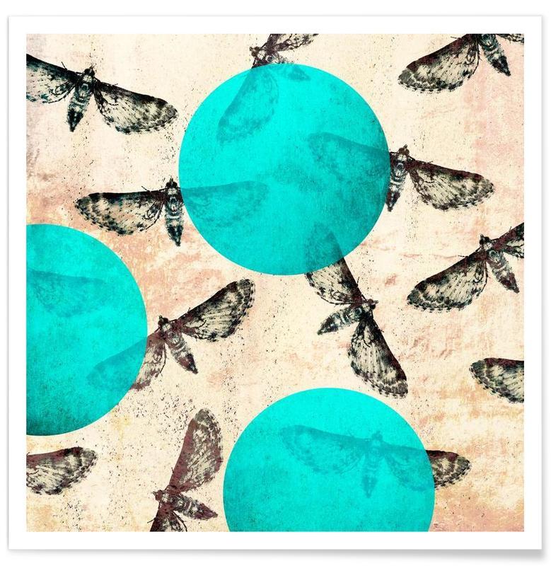 Moths 1 Poster