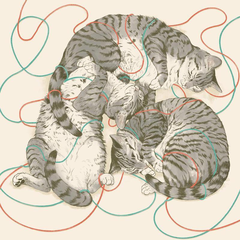 Sleeping Cats alu dibond