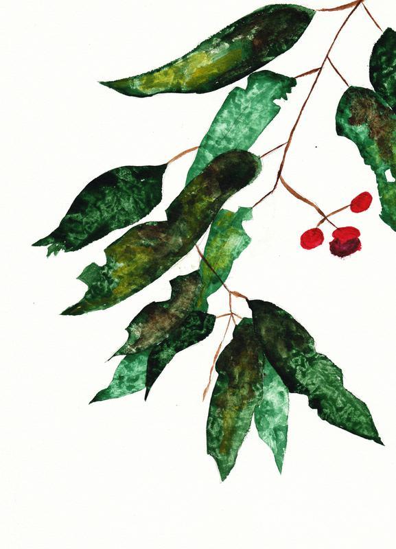 Autumn Berry 1 Leinwandbild | Dekoration > Bilder und Rahmen > Bilder | Mehrfarbig | Holz