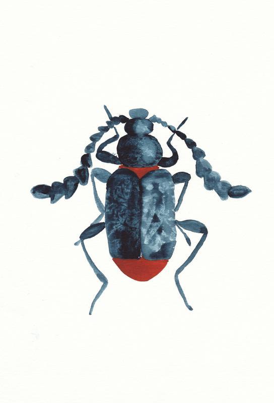 Blue Beetle acrylglas print