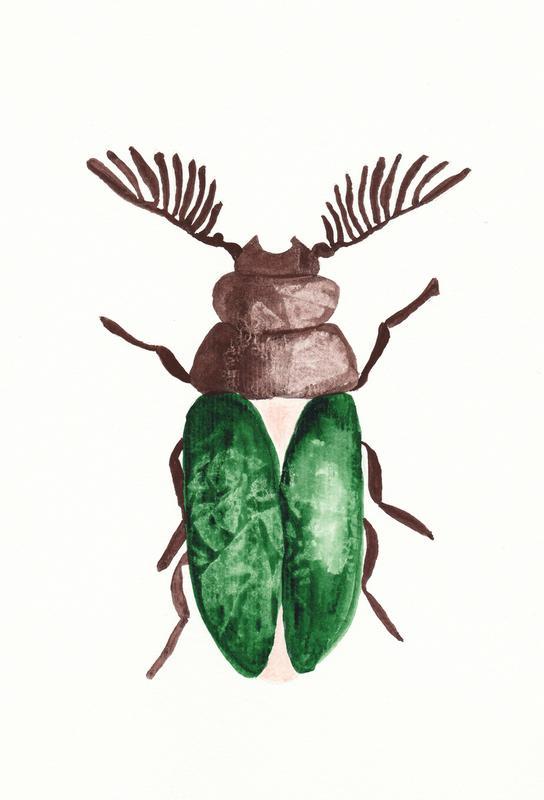 Greeny Beetle Acrylic Print