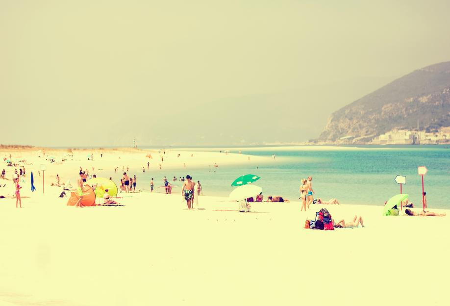 summer fun alu dibond