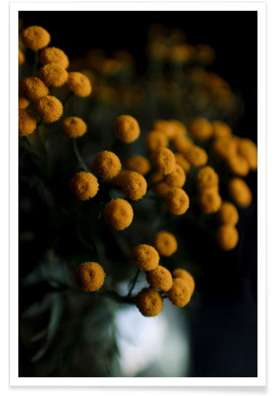 Mustard Yellow Flowers -Poster