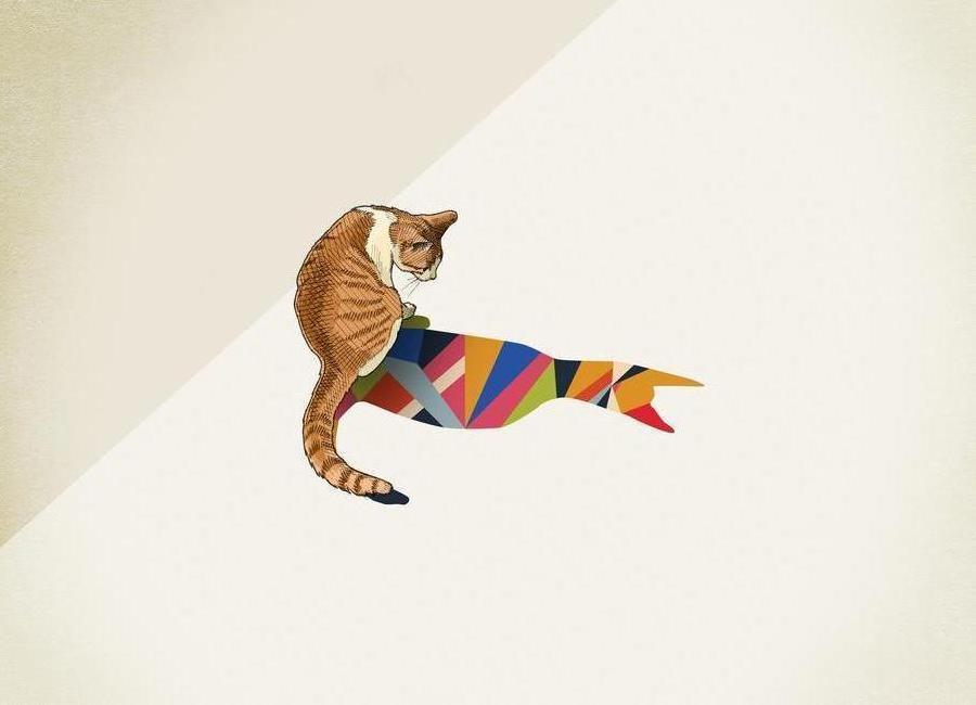 Walking Shadow - Cat 2 -Leinwandbild