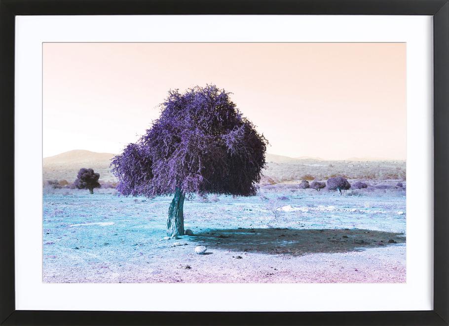 Zumaville Framed Print