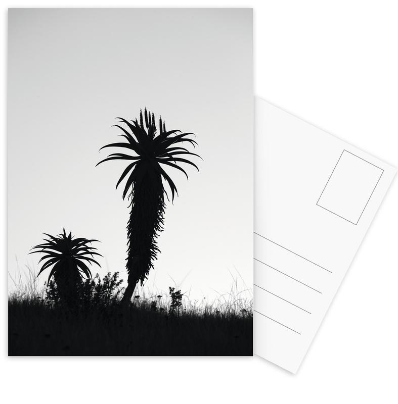 Aloe Soldier Postcard Set