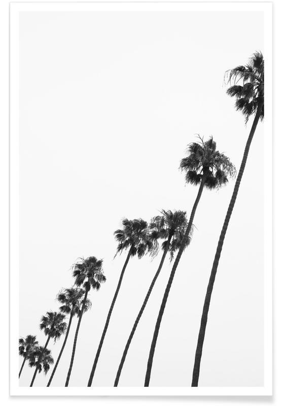 Cali Palms -Poster