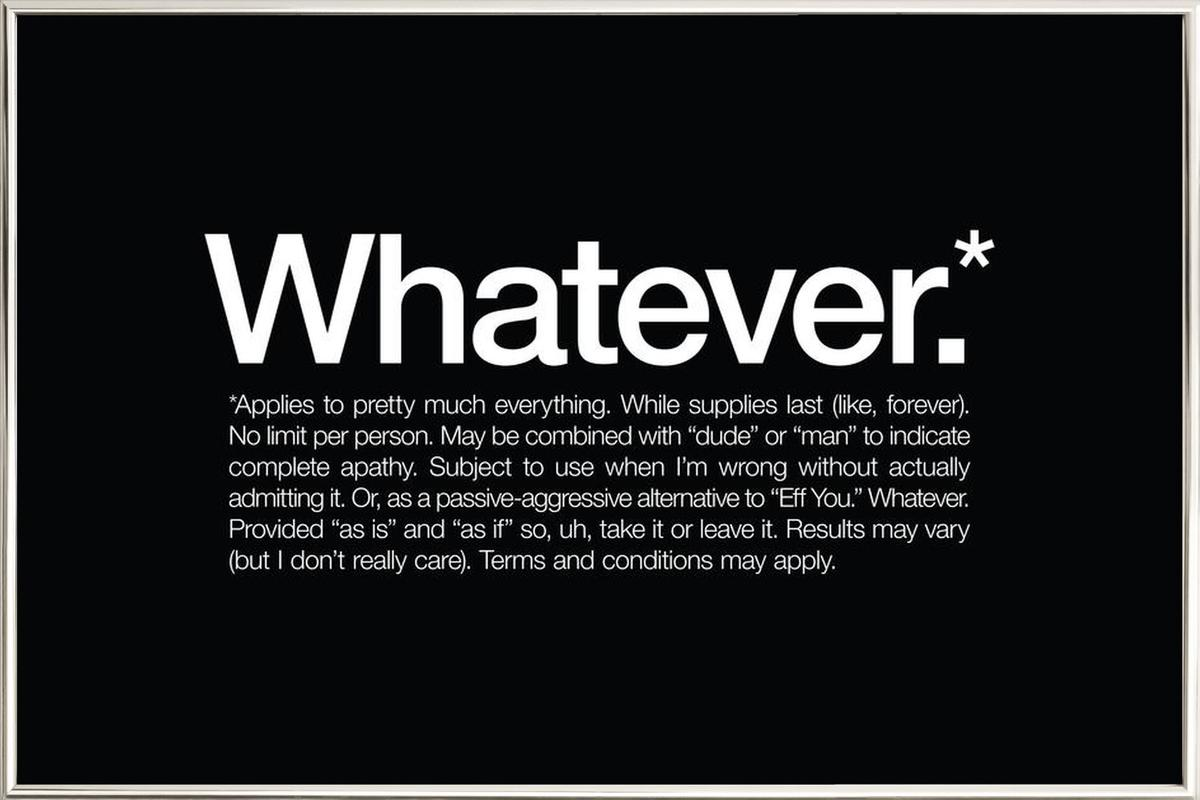 Whatever* poster in aluminium lijst
