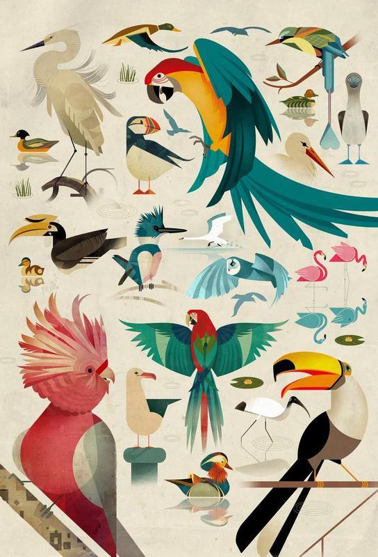Birds Alu Dibond Druck | Dekoration > Bilder und Rahmen > Poster | Mehrfarbig | Aluminium