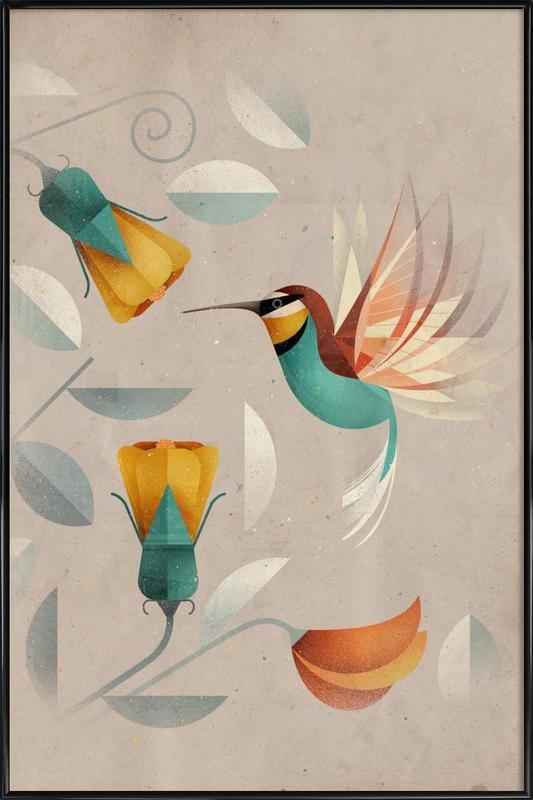 Kolibri Framed Poster