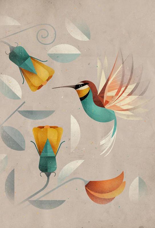Kolibri Acrylic Print