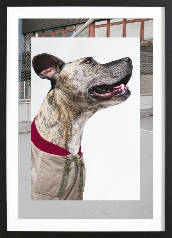 The Tailwaggers 1-3 Framed Print