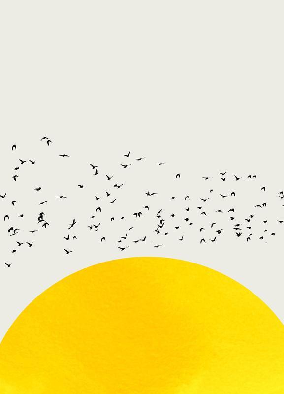 A Thousand Birds Canvas Print