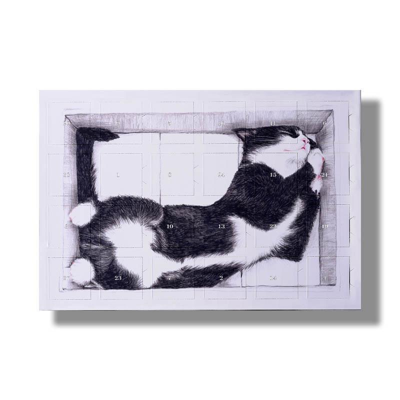 Katze im Karton Kinderschokolade Calendar