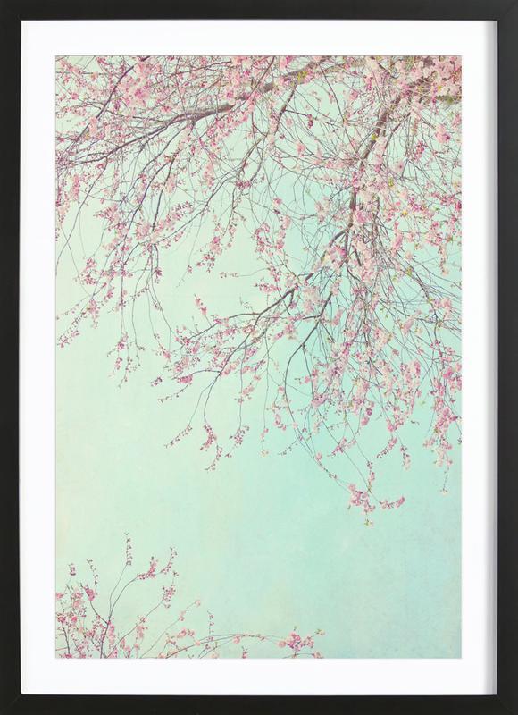 Day Dreamer Framed Print