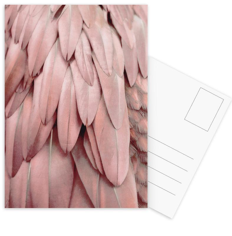 Pastel Feathers Postcard Set
