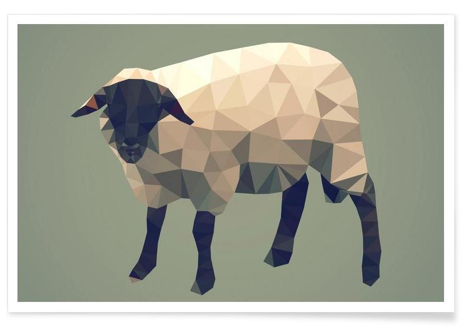 Ovis aries poster