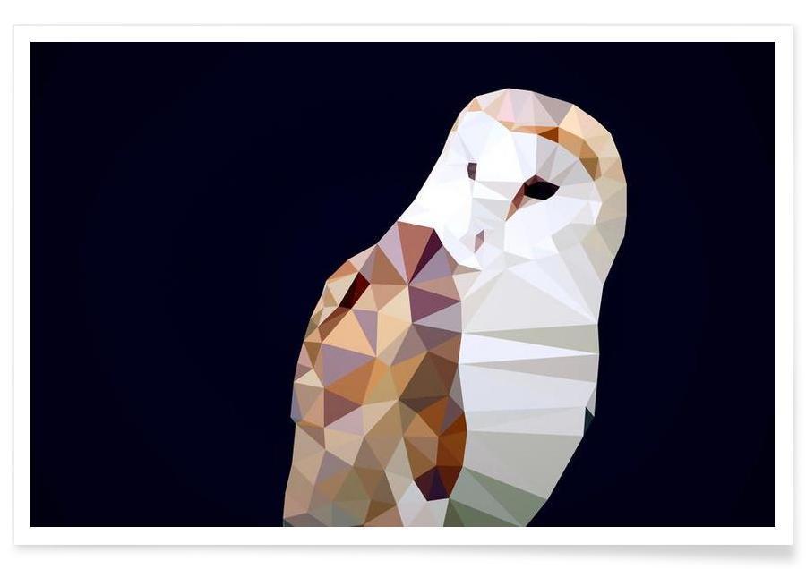 Tyto alba -Poster
