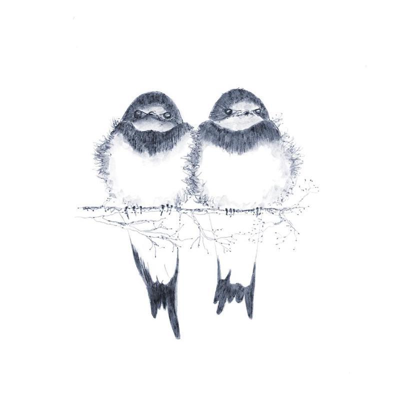 Birds Acrylglasbild