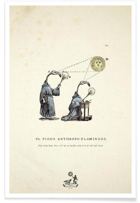 The pious anthropo-flamingos poster