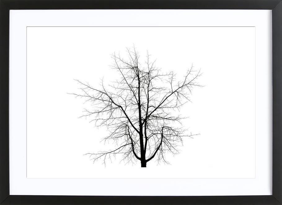 DJJU15_0009 Framed Print