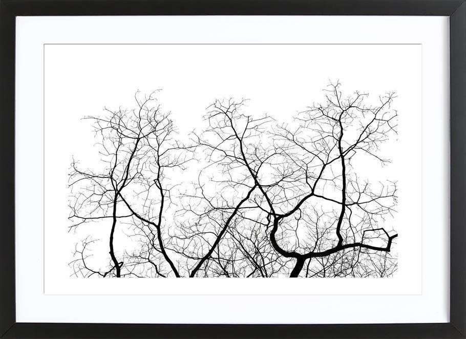 DJJU15_0011 Framed Print