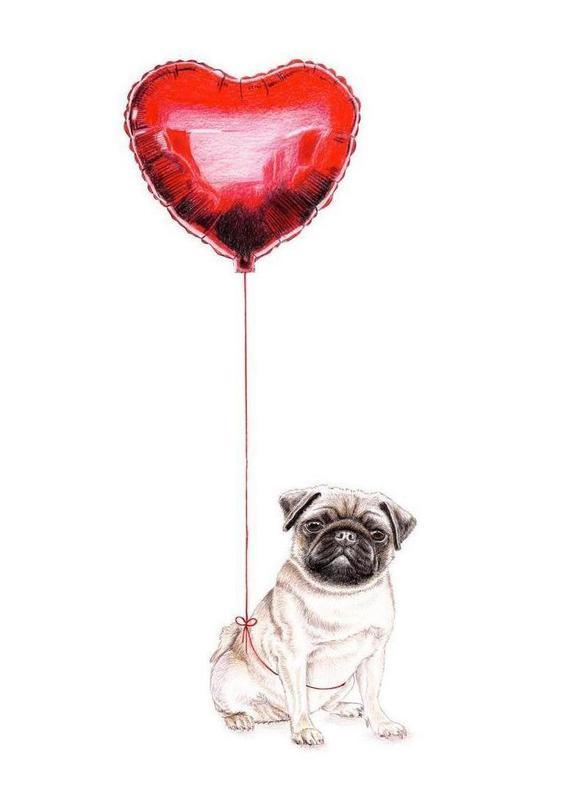 Pug & Balloon Leinwandbild | Dekoration > Bilder und Rahmen > Bilder | Mehrfarbig | Holz