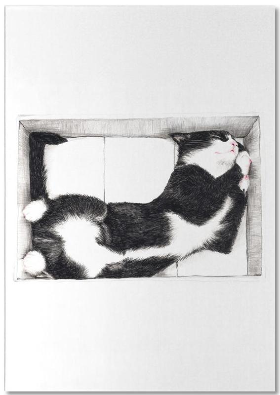 Katze im Karton Notizblock