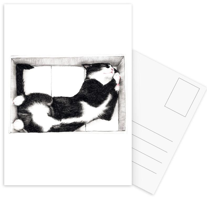 Katze im Karton -Postkartenset