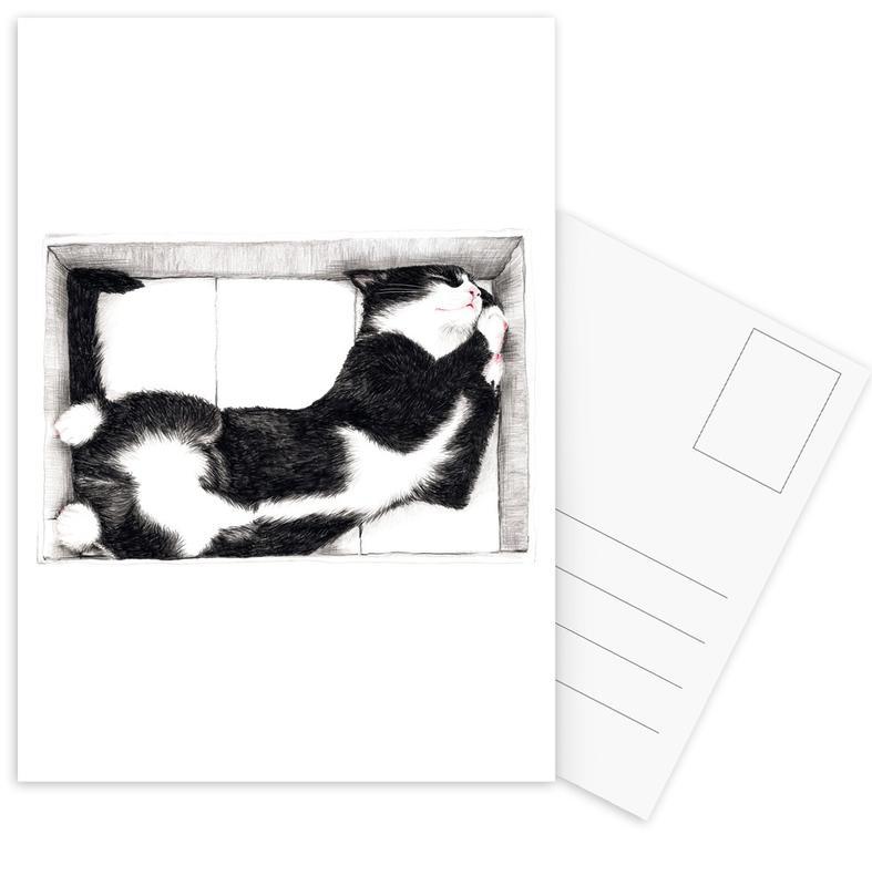 Katze im Karton Postkartenset