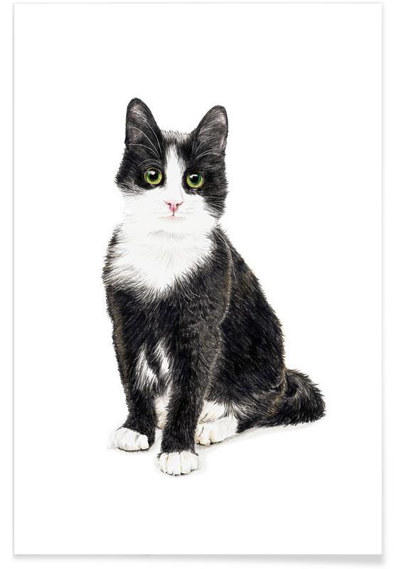 Katze Murmelauge Premium Poster