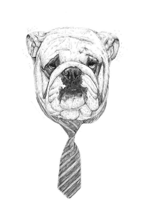 Cool dog -Acrylglasbild