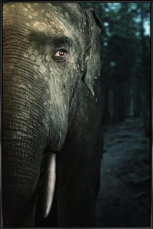 Wir sind Tiere Elefant Gerahmtes Poster