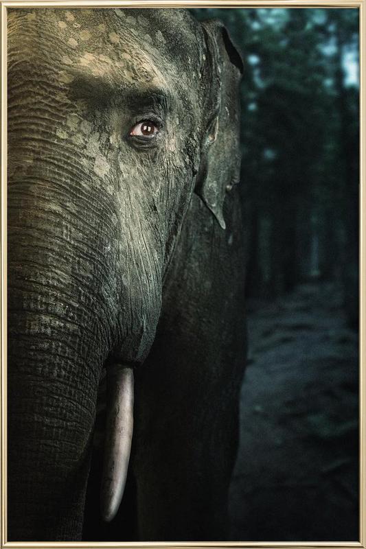 Wir sind Tiere Elefant Poster im Alurahmen