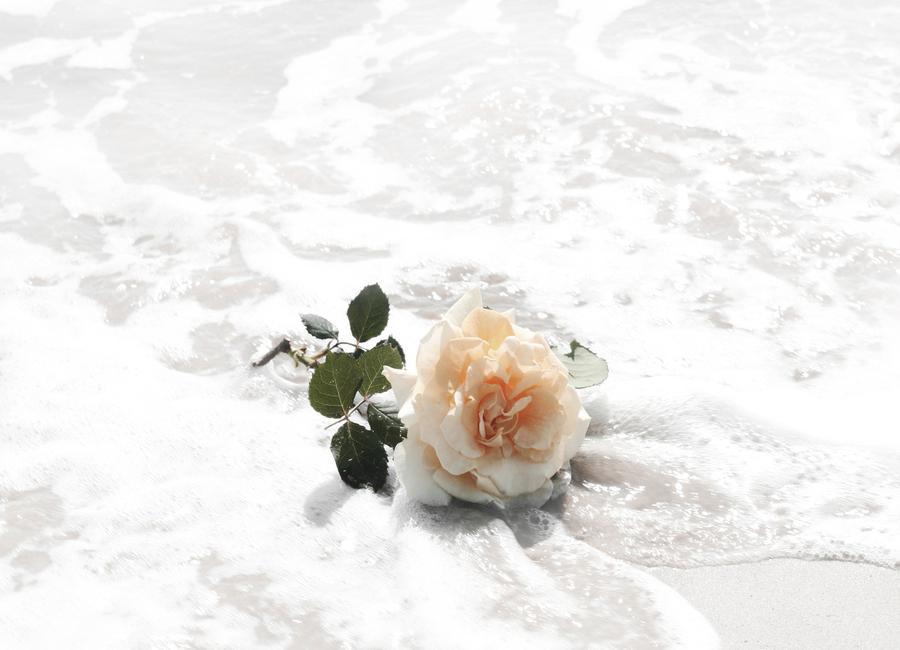 Romance -Leinwandbild