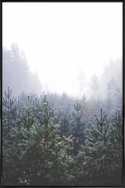Misty Forest Framed Poster