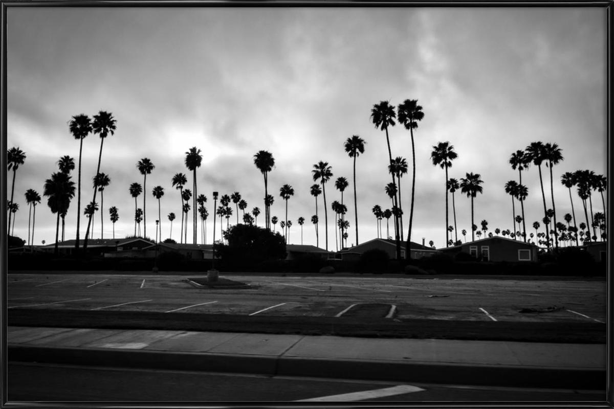 Palmtree Takeover Framed Poster